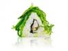 Wasabi Sushi Shop Wrocław Produkty i Akcesoria do Sushi i Kuchni Orientalnej (8)